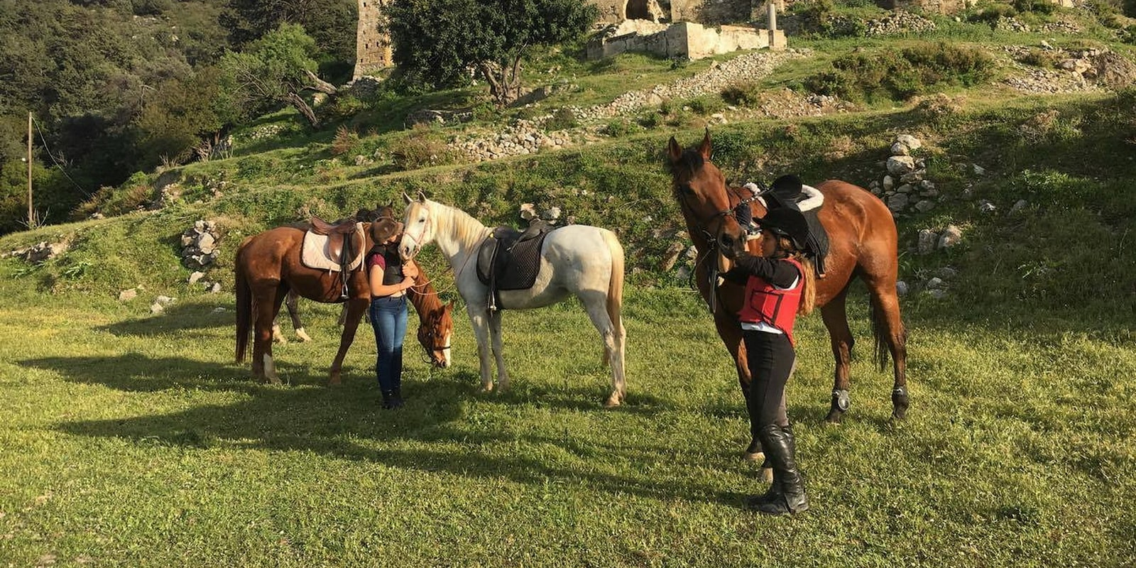 Horse Riding in Cyprus